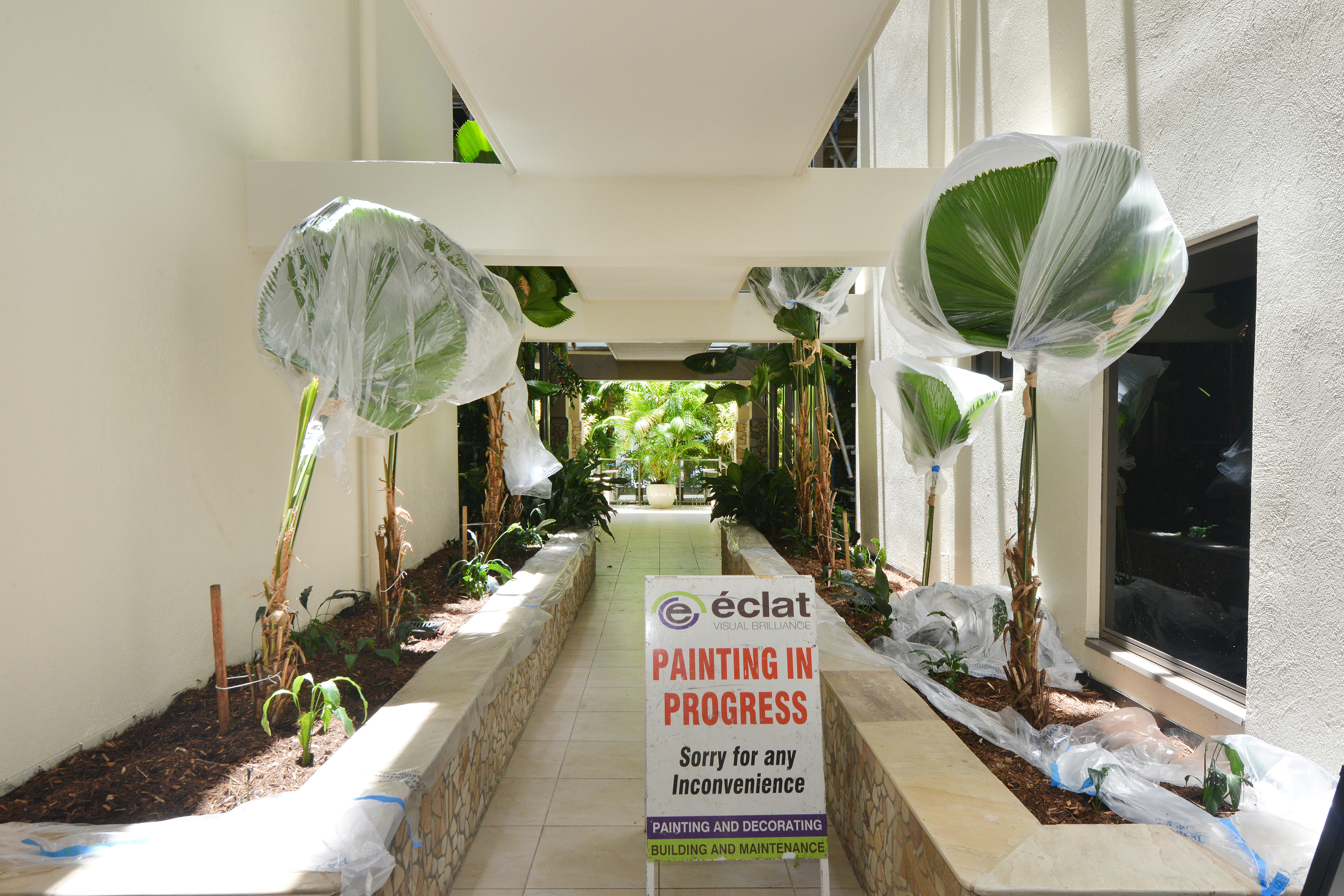 Interior Painting, Shantara resort, Painting, Repainting